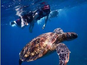 微笑优惠活动进行中 [冲绳 / 石垣岛] 蓝洞探险和海龟浮潜(带接送)*** 冠状病毒感染预防措施正在进行中 ***