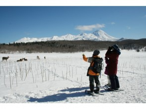 "[Hokkaido Shiretoko] Winter Shiretoko nature experience 1 day course ""Snowshoes, Drift ice walking, winter animal watching"""