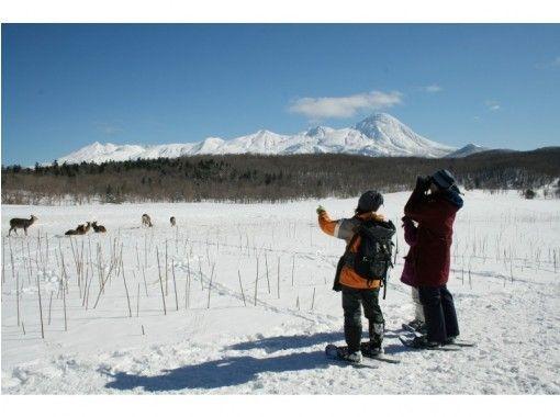 【北海道・知床】冬の知床自然体験1日コース「スノーシュー・流氷ウォーク・冬の動物ウォッチング」