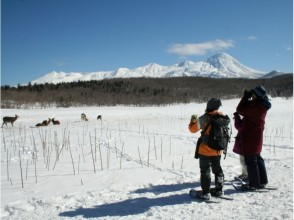 【Shiretoko】 Image of Winter Shiretoko Nature Experience 1 Day Course 【Snowshoes / Sea Ice Walk】