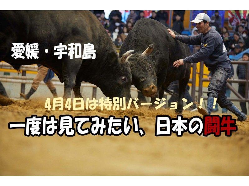【愛媛・宇和島】4月4日は特別ver!知られざる世界が楽しすぎる「オンライン闘牛ツアー」の紹介画像