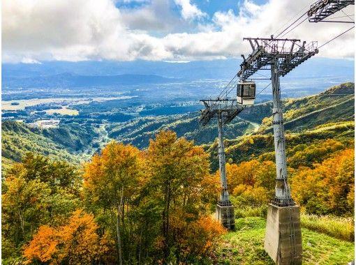 [Niigata / Myoko / Autumn Super Deals Day Trip Package]-Up to 30% OFF !! Superb view of autumn leaves / sightseeing gondola PKG ♪の紹介画像