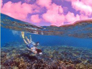 F【石垣島・半日シュノーケリング】ウミガメと泳ごう!日本一のサンゴ礁&ウミガメシュノーケル(レンタル器材&撮影データ無料)