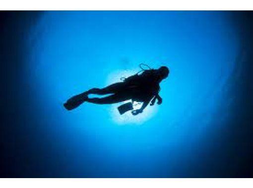 【神奈川県・三浦半島】体験ダイビング!ダイビング中の画像を無料プレゼント!の紹介画像