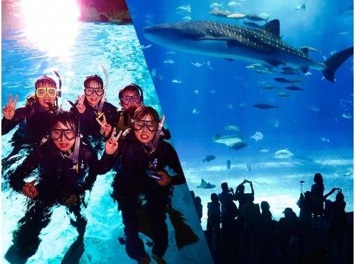 【沖縄・恩納村】青の洞窟 ボートシュノーケリング&美ら海水族館入館券付きプラン ボートで楽々エントリー!写真&動画の無料水中撮影付き