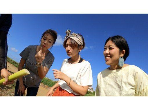 【沖縄・宮古島】有機サトウキビ・島バナナ農家が案内する 黒糖&島バナナスイーツ作り体験