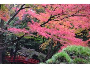 【オンライン東京ツアー】11/19(木)開催 「時代を散歩できるまち」文京 展望台からの絶景と小石川後楽園を巡る歴史の旅 <受付終了>
