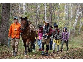 木曽馬と歩こう!健康ウォーキング(昼食付き)