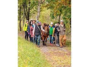 木曽馬と歩こう!里山ウォーキング(昼食付き)