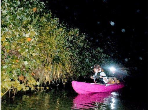 【1組だけの貸し切り♪】【ナイトカヤック専門】 夜のマングローブを大冒険!!(島人が案内するこだわりのツアー)の紹介画像