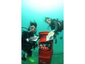 【周参見・黒潮の海】体験ダイビング(半日コース)の画像