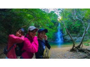 [Okinawa / Yanbaru] River hiking ★ Autumn / winter limited tour with lunch ★ Charter, photo / video shooting included