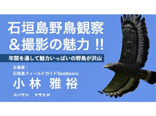 【沖縄県石垣島】バードウォッチング初心者、石垣島の野鳥に興味がある方に!!ベテランガイドが丁寧に質問、疑問、相談に回答致します。