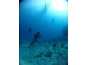【奄美大島・加計呂麻島 ダイビング】体験ダイビング(ビーチ)の画像