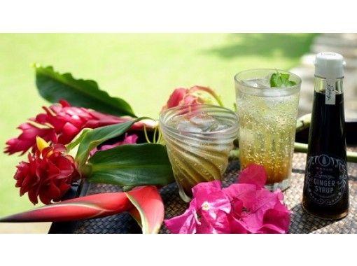 [在線中體驗]生薑涼茶和自製海島草藥從體內熱身!沖縄石垣島在線中體驗之旅の紹介画像