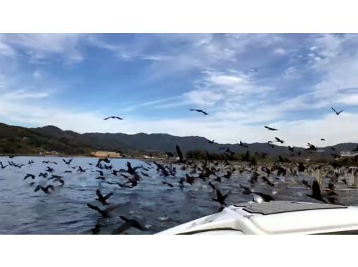 冬限定 躍動と感動の貴重体験。可愛いユリカモメの餌付けと千羽の野鳥を追う「チェイス・ザ・バード」極寒ツアー