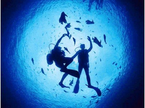 【オンラインツアー】息をのむほど美しい沖縄の水中世界をご案内!お家でダイビングツアー♪♪の紹介画像
