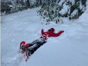 【北海道・支笏湖】プロガイドと行く秘境スノーシューツアーin 苔の回廊<初心者OK・レクチャー付>