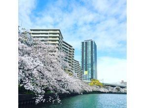 Osaka adult care plan cherry blossom cherry cruise charter