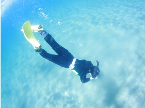 [1 day trial beginner Fukui] feel free to day snorkeling ♪ in Echizenの紹介画像