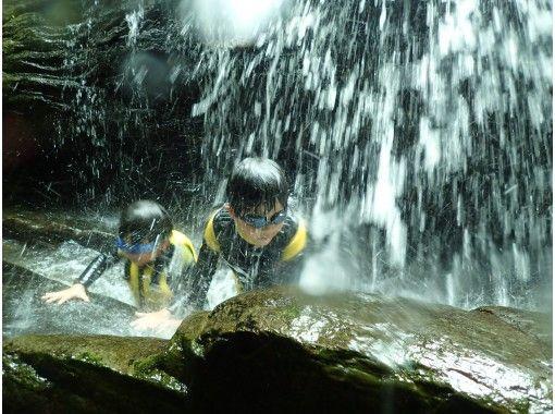 【沖縄・やんばる】リバートレッキング★大人も子供も楽しめる冒険ツアー★貸切、写真・動画撮影付き