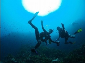 【1日体験・初心者・福井】海で体験ダイビング!の画像