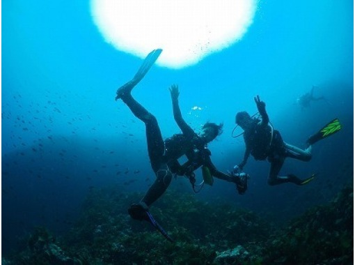 【One day experience ・ beginners ・ Fukui] Experience in the sea Diving!の紹介画像