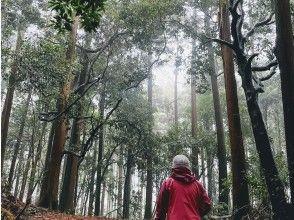 【オンラインツアー】3/27(土)開催 東京・伊豆大島~大地のパワーを感じよう♪ 神秘の森とオオシマザクラ
