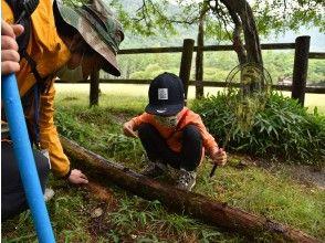 【栃木県・奥日光】昆虫から自然を見てみよう!じ~~~っくり学ぶ昆虫観察ツアー