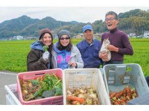 【佐賀・嬉野市】◆子牛さん(佐賀牛)へ餌やり体験 ◆野菜の収穫 ◆押し寿司作り(ファミリーにおすすめ)