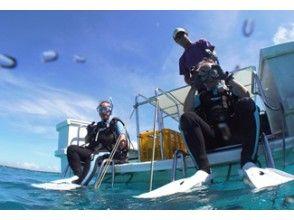【石垣島】3ボートファンダイビングの画像