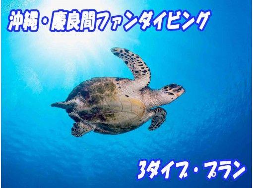 https://img.activityjapan.com/10/36036/10000003603601_WoG2gkx9_3.jpg?version=1614261290
