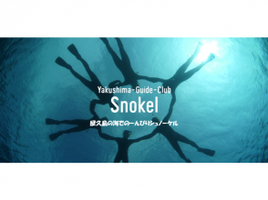 [Kagoshima Yakushima] may meet the sea turtles? Image of snorkel experience (half-day course)