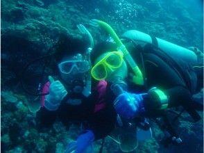 【静岡県・伊豆海洋公園】体験ダイビング(初心者向け!)の画像