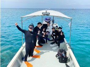 【沖縄・慶良間諸島】貸切ボートで行く無人島でウミガメダイビング!!スノーケリングや素潜りも楽しめる欲張りツアー