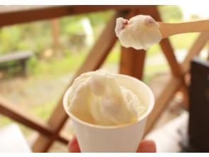 [広島/色拉町]體驗用鮮榨牛奶製作冰淇淋