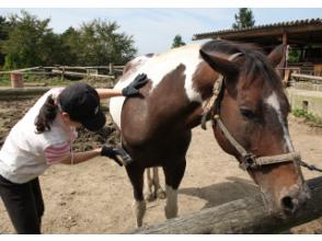 [広島/色拉町]受歡迎的牧場! Fureai騎馬(拉馬)體驗