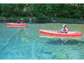 洞爺湖カヤック  東湖畔でのんびりカヤック