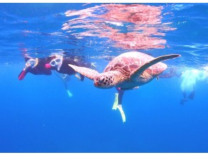 """[Ishigaki island Diving / Phantom Island / 1 Day] """"Phantom Island Landing! & 1 Day Experience Diving Boat Tour 1dive"""" In the afternoon, Snorkeling looking for sea turtles!"""