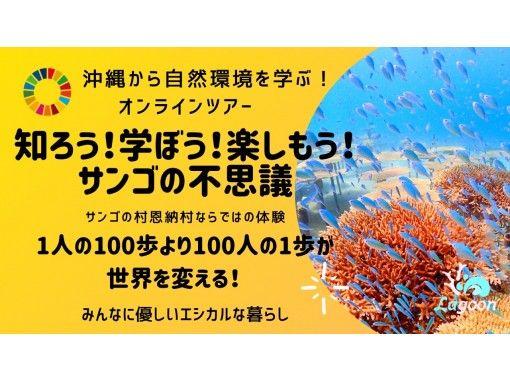 【沖縄・恩納村】沖縄から自然環境を学ぶ!サンゴの不思議!【SDGs×エシカル】知ろう!学ぼう!楽しもう!サンゴの不思議!オンラインツアーの紹介画像