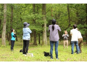 【広島・帝釈峡・神石高原】帝釈の森リトリートプラン♪ 憧れのログハウスに泊まって森林セラピーを体験  森に癒される1泊2日の旅