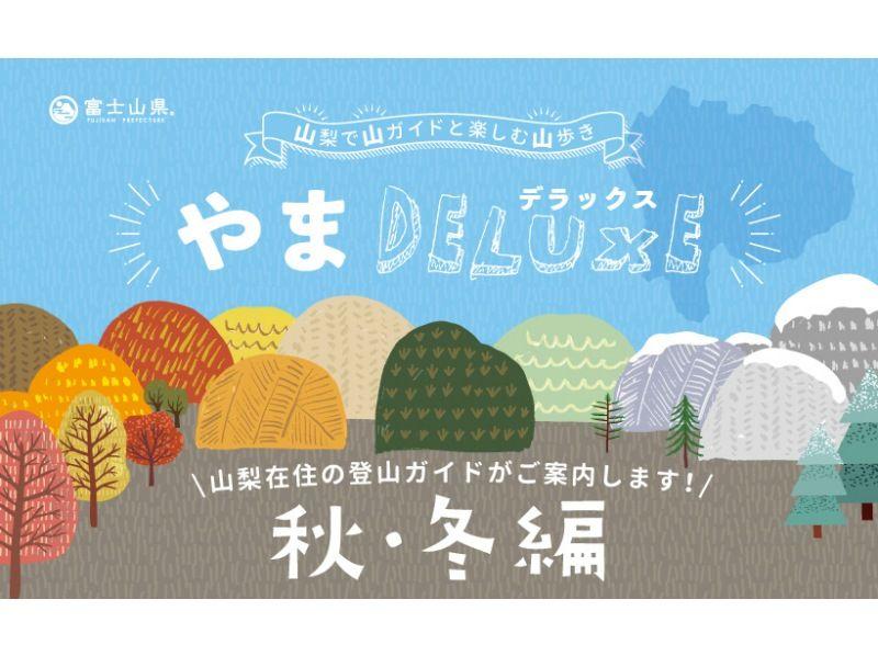 【山梨県】=やまデラックス=【コース②】西沢渓谷 レベル★の紹介画像
