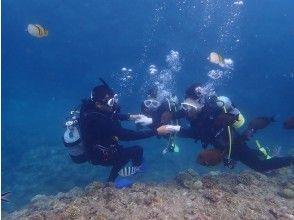 【沖縄・南部】☆体験ダイビング☆ 1グループ制で時間の制限なしの安心安全プラン!