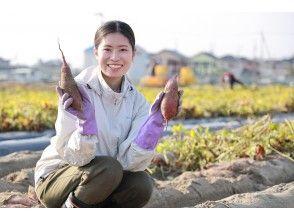 "[Tokushima / Matsushige Town] Organic Eco Festa 2020 Grand Prize Winning Farmer ""Naruto Kintoki"" ""Lotus Root"" Harvesting Experience"