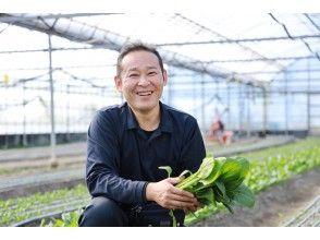 [Tokushima / Komatsushima City] From harvesting to cooking methods! From organic vegetable harvesting to cooking methods! Learn the secrets of the deliciousness of organic vegetables