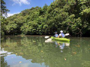이리 오모테 섬 카누 투어 풍차