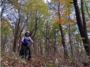 森の中を自転車でかけめぐる初めて体験をしてみませんか? ガイドと行くオフロードサイクリングツアー。