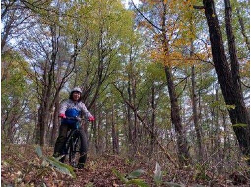 森の中を自転車でかけめぐる初めて体験をしてみませんか? ガイドと行くオフロードサイクリングツアー。の紹介画像