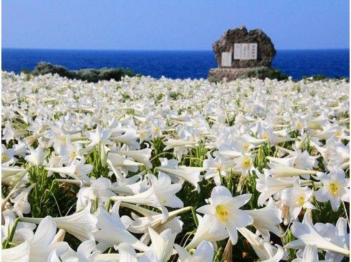 【沖縄・伊江島】島のヒミツを教えます!!夕日とロマンのフラワーアイランド「伊江島」をクイズ形式でご案内♪