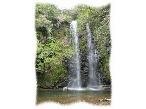 【沖縄・名護】大自然に癒される、南国リバートレッキングプラン!(半日コース)